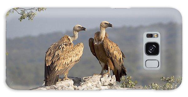 Griffon Vulture Pair Extremadura Spain Galaxy Case