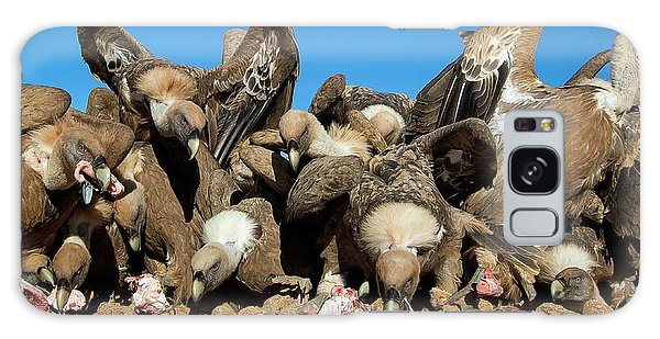 Carcass Galaxy Case - Griffon Vultures Feeding by Nicolas Reusens