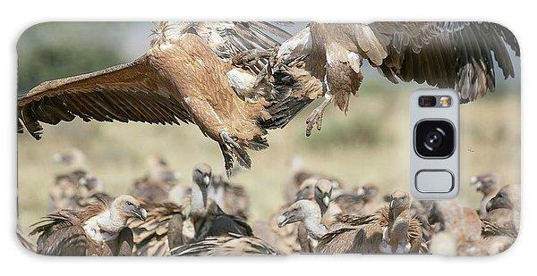 Griffon Galaxy Case - Griffon Vultures by Nicolas Reusens