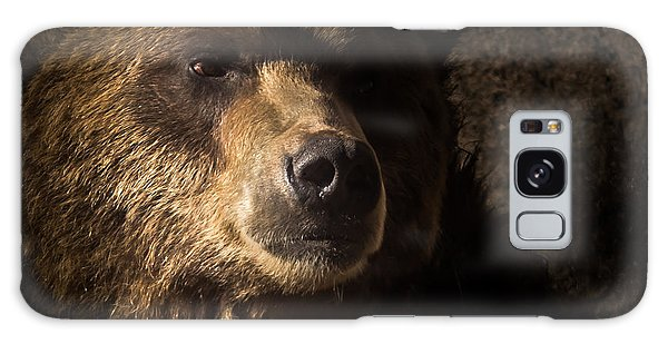 Grizzly 2 Galaxy Case