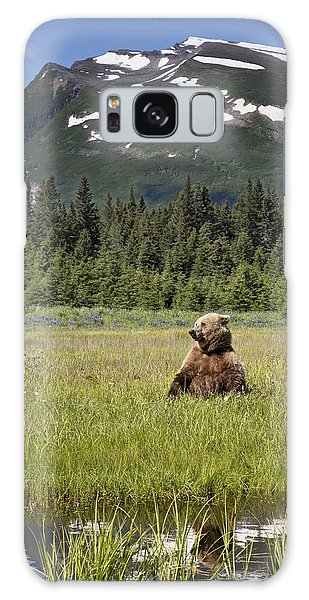 Grizzly Bears Galaxy Case - Grizzly Bear In Meadow Lake Clark Np by Richard Garvey-Williams