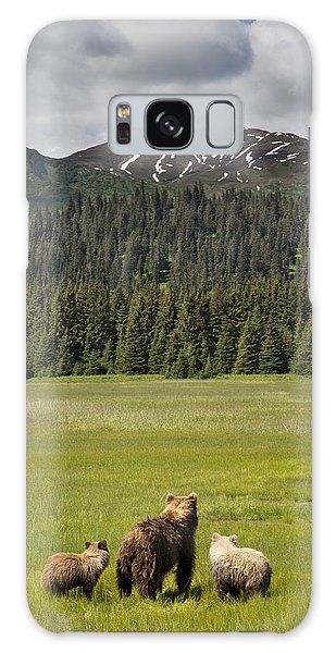 Grizzly Bears Galaxy Case - Grizzly Bear Mother And Cubs In Meadow by Richard Garvey-Williams