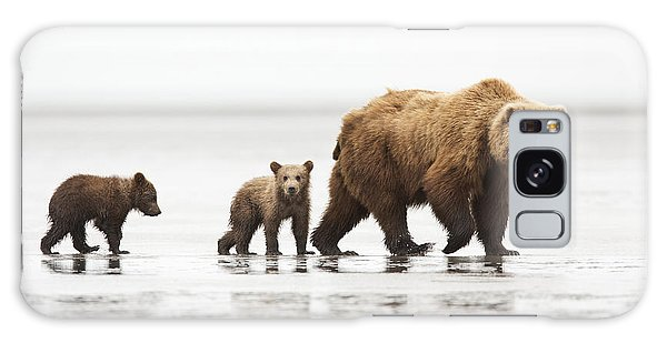 Grizzly Bears Galaxy Case - Grizzly Bear Mother And Cubs Lake Clark by Richard Garvey-Williams