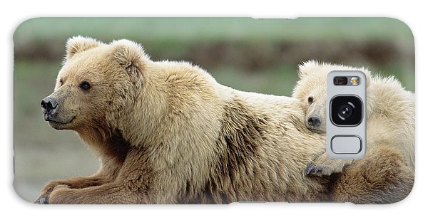Grizzly Bears Galaxy Case - Grizzly Mother And Son by Yva Momatiuk John Eastcott
