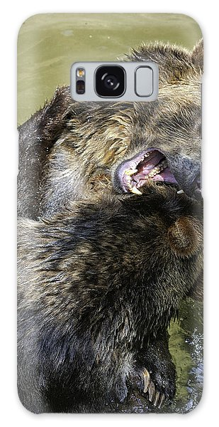 Grizzly Cubs Roughhousing Galaxy Case