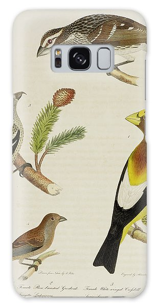 Grosbeak And Crossbill Galaxy Case
