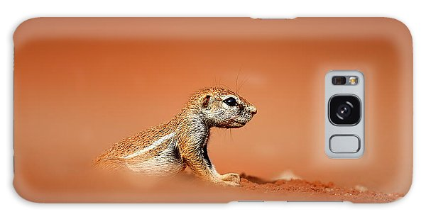Angle Galaxy Case - Ground Squirrel On Red Desert Sand by Johan Swanepoel