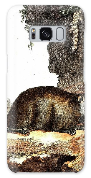 Groundhog Galaxy Case - Groundhog by Collection Abecasis/science Photo Library
