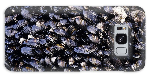 Group Of Mussels Close Up Galaxy Case