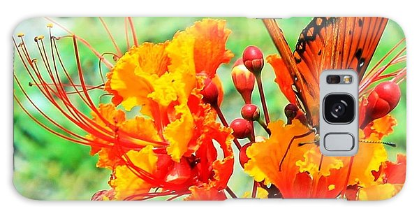 Gulf Fritillary Butterfly On Pride Of Barbados Galaxy Case