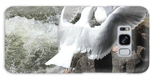 Gull Greeting Galaxy Case