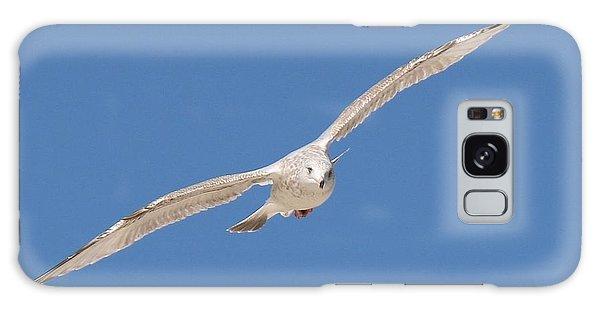 Gull In Flight  Galaxy Case