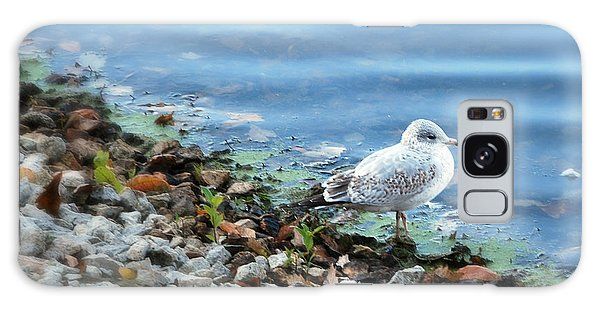 Gull Galaxy Case