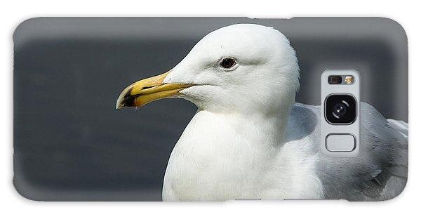 Gull Galaxy Case by Michele Wright