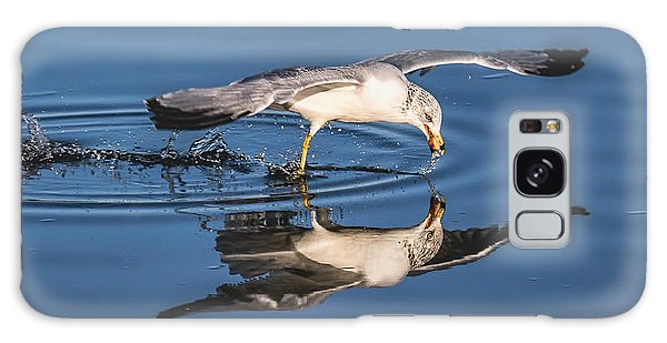 Gull Reflection Galaxy Case