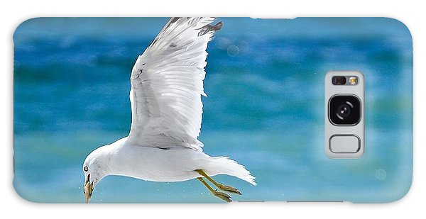 Gull With Fish Galaxy Case by Elaine Manley