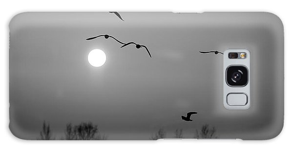 Gulls On The Vistula River Galaxy Case