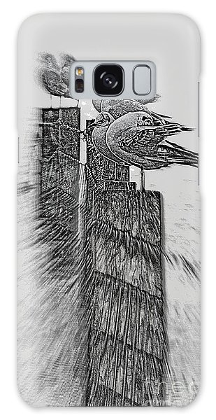 Gulls In Pencil Effect Galaxy Case by Linsey Williams