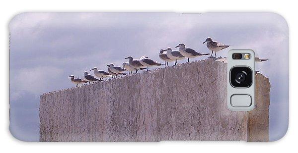 Gulls Galaxy Case by Jon Emery