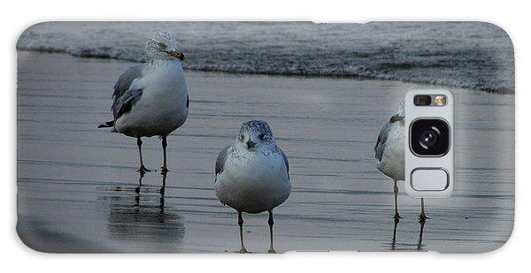 Gulls Night Out Galaxy Case