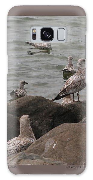 Gulls On The Rocks Galaxy Case