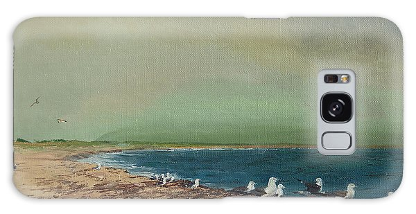 Gulls On The Seashore Galaxy Case