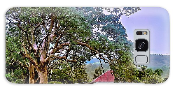 Gumtree Gully Galaxy Case by Wallaroo Images