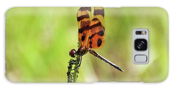 Halloween Pennant Galaxy Case by Al Powell Photography USA
