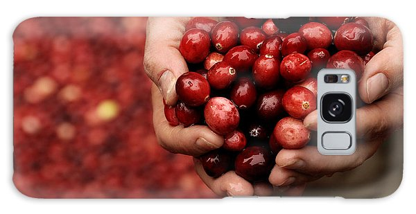 Handful Of Fresh Cranberries Galaxy Case