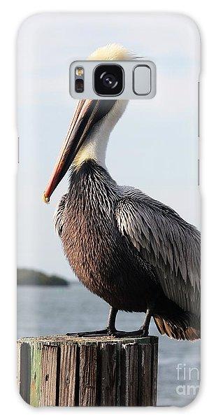 Handsome Brown Pelican Galaxy Case