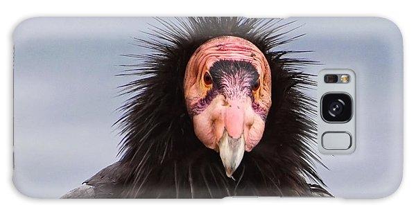 Handsome California Condor Galaxy Case