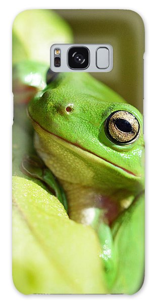 Hang In There Frog Galaxy Case