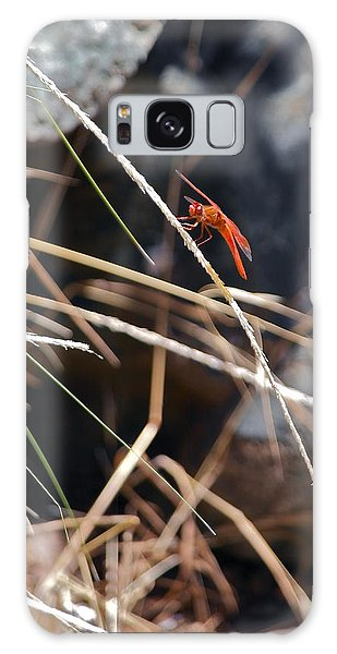 Hanging On Galaxy Case by Michele Myers