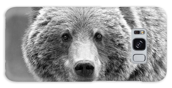 Grizzly Bears Galaxy Case - Happy Bear by Stephen Stookey