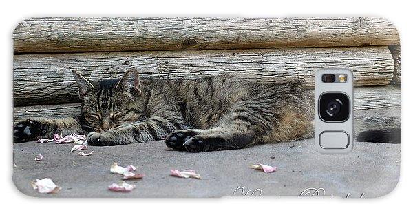 Happy Birthday Sleeping Cat Galaxy Case by Michele Wright