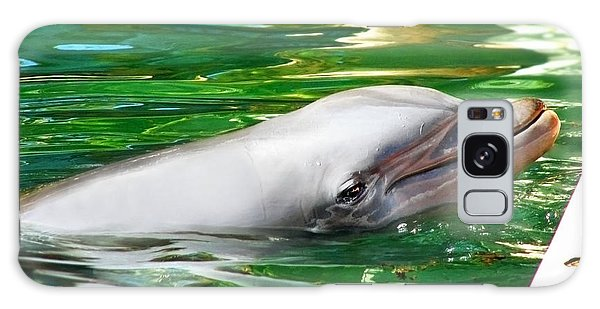 Happy Dolphin Galaxy Case
