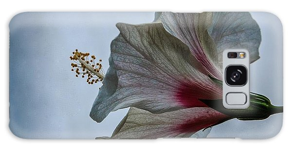 Happy Hibiscus At Biltmore Conservatory Galaxy Case by Lori Miller