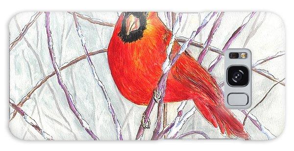 Happy Holidays Snow Cardinal Galaxy Case