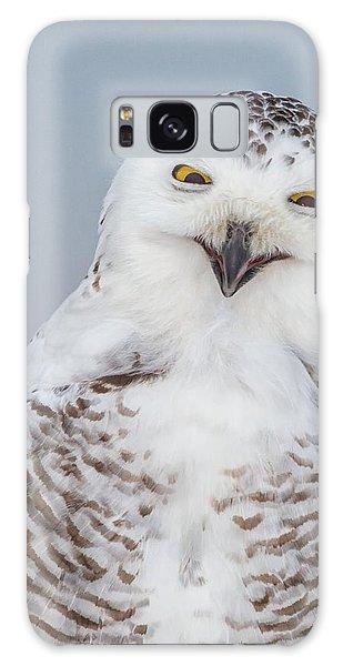 Happy Snowy Owl Galaxy Case