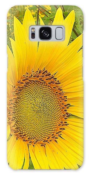 Happy Sunflower Galaxy Case