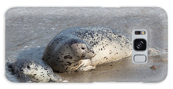 Harbor Seals In The Surf Galaxy Case