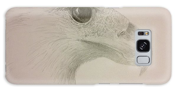 Harpy Eagle Study Galaxy Case