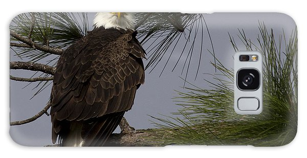 Harriet The Bald Eagle Galaxy Case by Meg Rousher