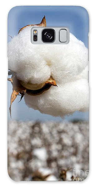 Harvest Ready Cotton Boll Galaxy Case