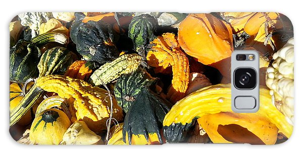 Harvest Squash Galaxy Case