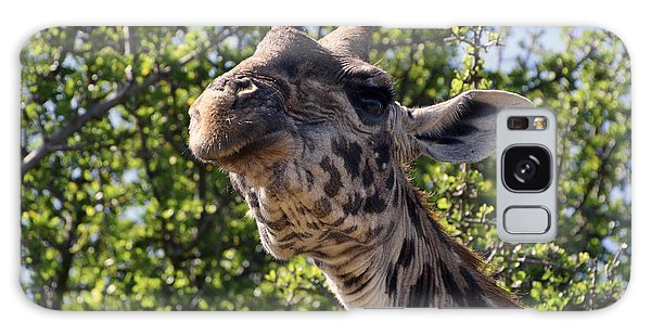 Haughty Giraffe Galaxy Case