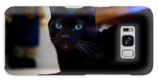 Havana Brown Cat Galaxy Case
