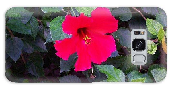 Hawaiian Flower Galaxy Case