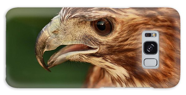 Hawk Eye Galaxy S8 Case
