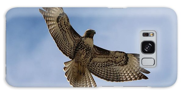 Hawk In Flight  Galaxy Case